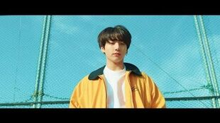 BTS (방탄소년단) 'Euphoria Theme of LOVE YOURSELF 起 Wonder'