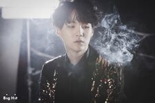 Suga Wings Shoot (6)