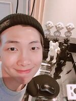 Rap Monster 86