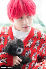 V Naver x Dispatch Dec 2018 (4)