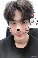 Jin Happy New Year's Day 2019