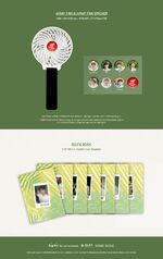 BTS Summer Package 2017 Info (3)