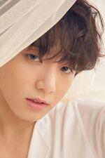 Jungkook Love Yourself Tear Concept Photo U Version