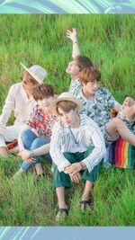 V, Suga, Jimin, Jin and J-Hope Summer Package 2017 Wallpaper