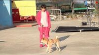 BANGTAN BOMB There's a Dog on the Set with BTS! - BTS (방탄소년단)