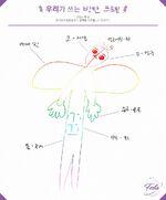 BTS 2017 Profile 2