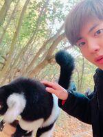 Jin Twitter Oct 18, 2018 (2)