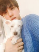 Jin Twitter Sep 8, 2017 (2)