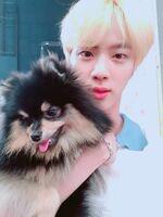 Jin Twitter June 27, 2018