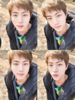 2017 World Wide Handsome Jin Day (17)