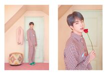 Jin Map of the Soul Persona Version 3