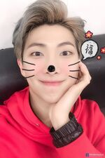 RM Happy New Year's Day 2019