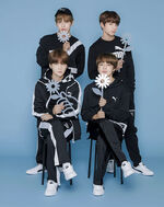Suga, Jimin, V and Jungkook Puma COURT STAR