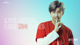 RM Live Seoul Like I Do
