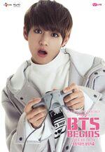 BTS Begins V (2)