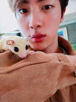 Jin Twitter Nov 1, 2018 (4)