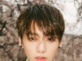 Jeon Jung-kook (BTS Universe)