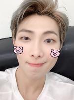 RM Twitter Jan 1, 2019 (2)
