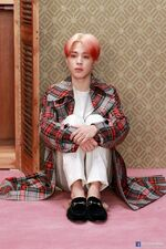 Jimin Map of the Soul Persona Shoot (2)