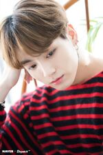 Jungkook Naver x Dispatch Dec 2018 (3)