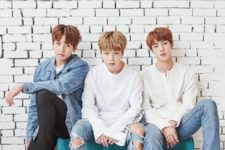 2017 BTS Festa photo 11