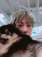 Jin Twitter Feb 2, 2019 (4)