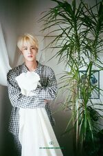 Jin 2019 Season Greeting Teaser Image