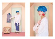 V Map of the Soul Persona Version 3