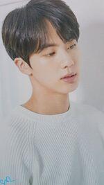 Jin MEDIHEAL X BTS 1