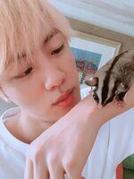 Jin Twitter July 6, 2018 (2)