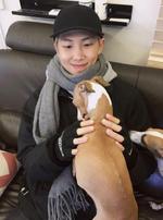 RM Twitter Nov 23, 2017 (1)