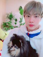 Jin Twitter Feb 2, 2019 (1)