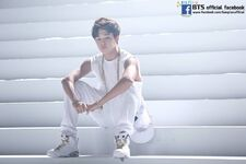 BTS Festa 2014 Photo Album (33)