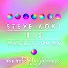 Waste It On Me (Steve Aoki Remix)