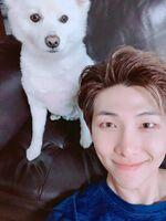 RM Twitter June 7, 2018