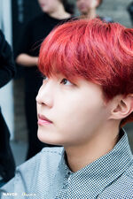 J-Hope D-icon by Dispatch (6)