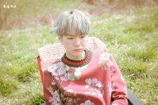 Suga Young Forever Shoot (6)
