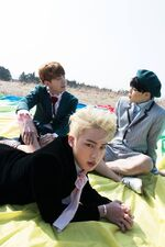 J-Hope Jin Jimin Young Forever