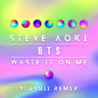 Waste It On Me (Slushii Remix) Cover
