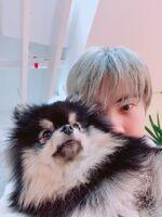 Jin Twitter Feb 2, 2019 (2)