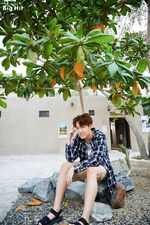 Summer Package 2016 (31)