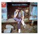 Beaucoups of Blues (Album)