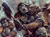 Orc (Forgotten Realms)