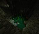 Underground Oasis