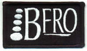 Bfro patch scan