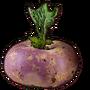Turnip01 icon