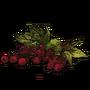 Berries icon-0
