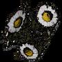 Chamomile01 Icon