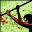 SharpScratch Icon