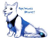 blue lantern dog